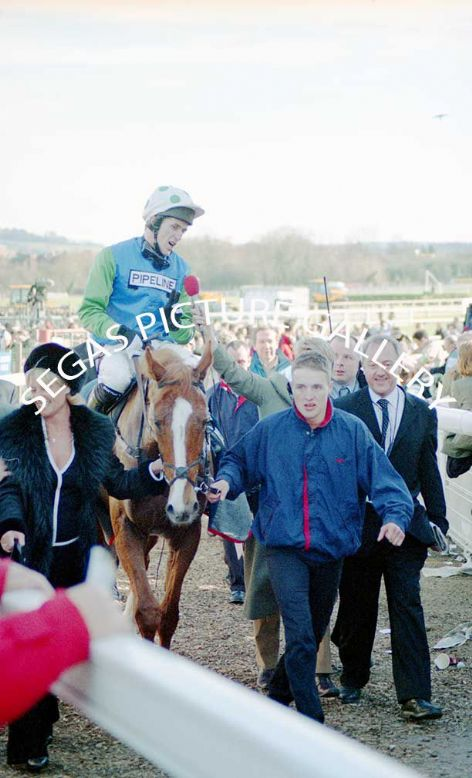 Racehorse Well Chief with Jockey A P McCoy